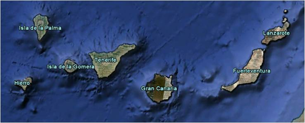 First Coronavirus Active Survey in Rodents From the Canary Islands
